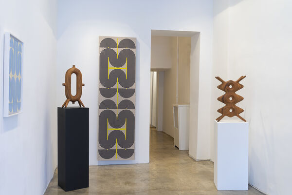 Fluid Structure, installation view