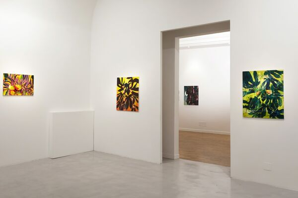 Nicholas William Johnson - DEWDRINKER or The Intolerable Strangeness of Vegetable Consciousness, installation view