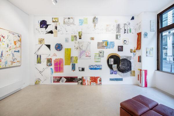 Guillaume Lebelle, Sur le Vif, installation view