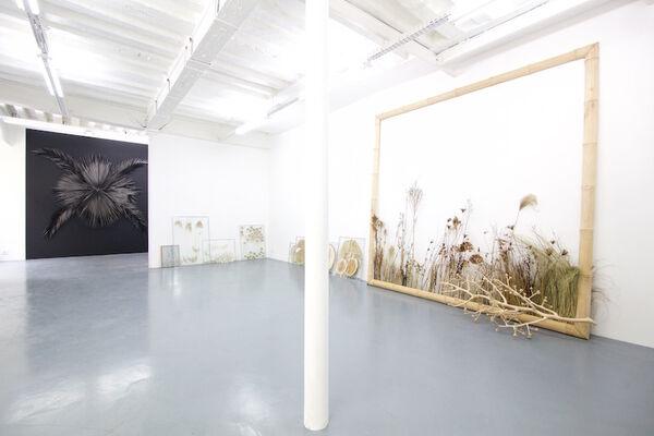 L'Herbier noir, installation view