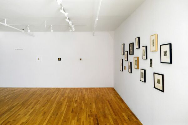 the tiny picture show, installation view