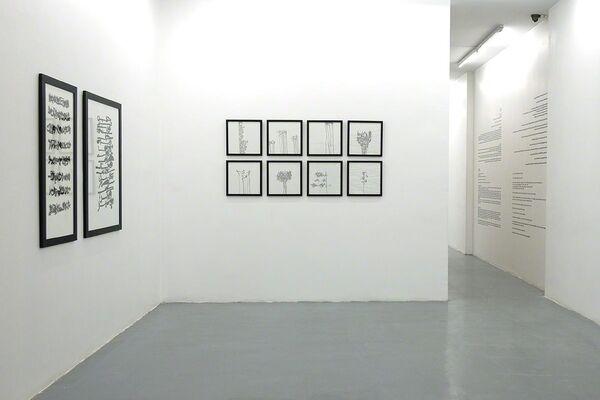 Callidrawing, installation view