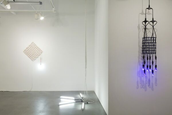 All That Glows Sees, installation view