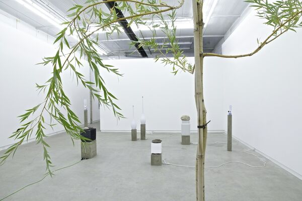 Free And Easy Wanderer, installation view