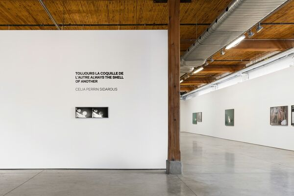TOUJOURS LA COQUILLE DE L'AUTRE ALWAYS THE SHELL OF ANOTHER, installation view