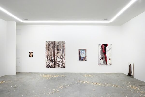 Obsolete Decoy, installation view