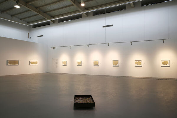 Edge of Vision 视觉的边界, installation view