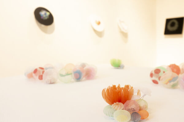 Natural Grace, installation view