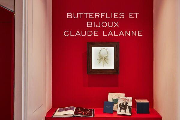 Butterflies Et Bijoux, installation view