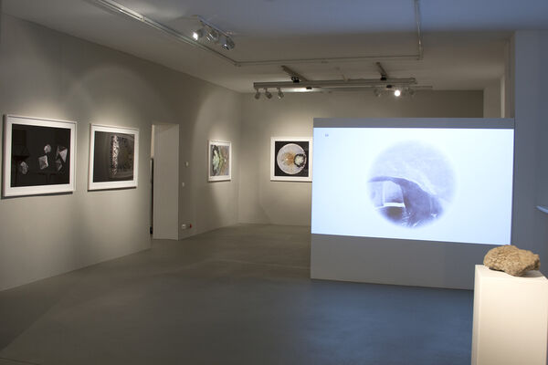 Edgar Lissel. Ruptures in the cinema of the mind -Encounters with Natura Naturans, installation view