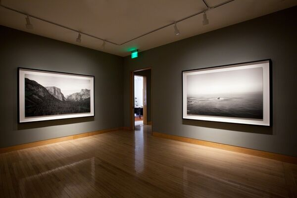 Richard Learoyd: Work from Two Rooms, installation view