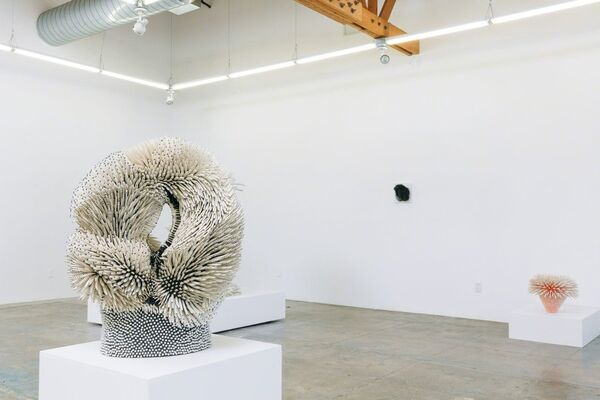 Zemer Peled - Nomad, installation view