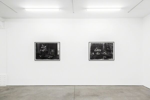 Christopher Cook: Shadows We Run For, installation view