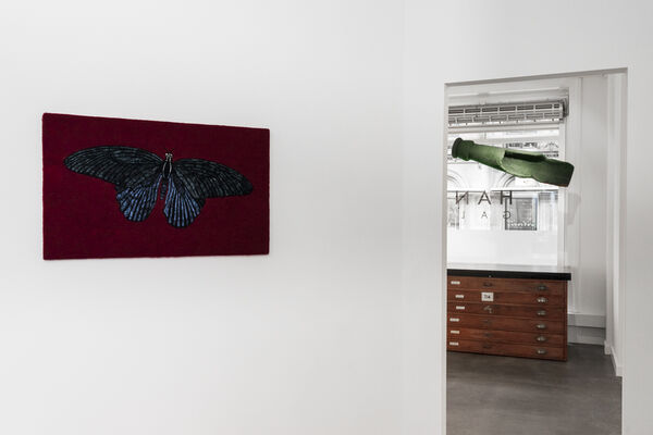 Whistleblow, installation view