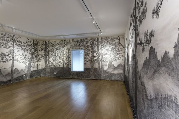 Acquirement, installation view