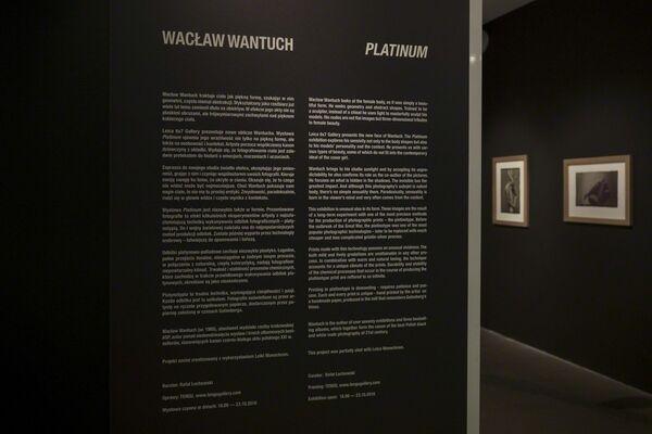 Platinum by Wacław Wanuch, installation view