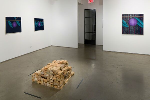 Nadia Ayari: Bricks, installation view