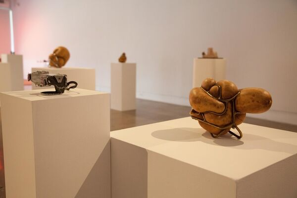 Rogue Objects | JJ PEET and Rob Rhee, installation view