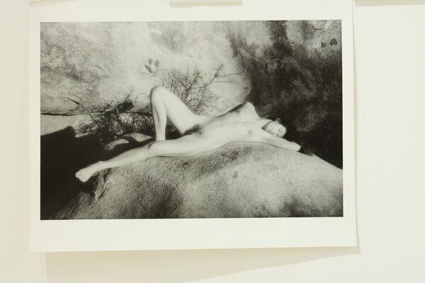 Cynthia MacAdams: my landscape, installation view