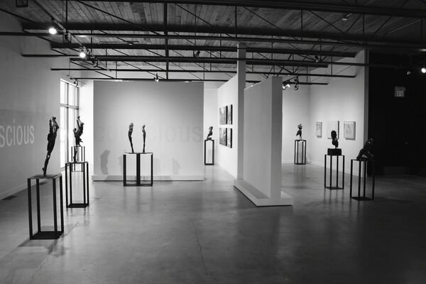 Blake Ward- Inner Perception, Outer Reflections, installation view
