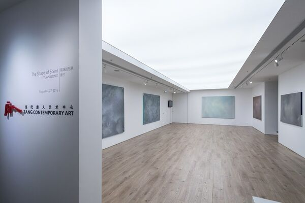 The Shape of Scent, installation view