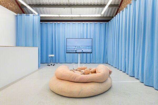 Stine Deja & Marie Munk 'Synthetic Seduction', installation view