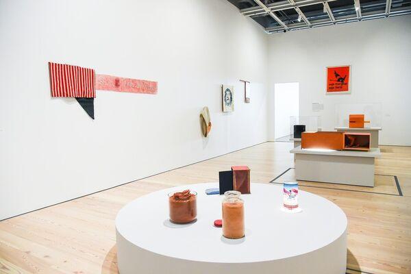 Hélio Oiticica: To Organize Delirium, installation view
