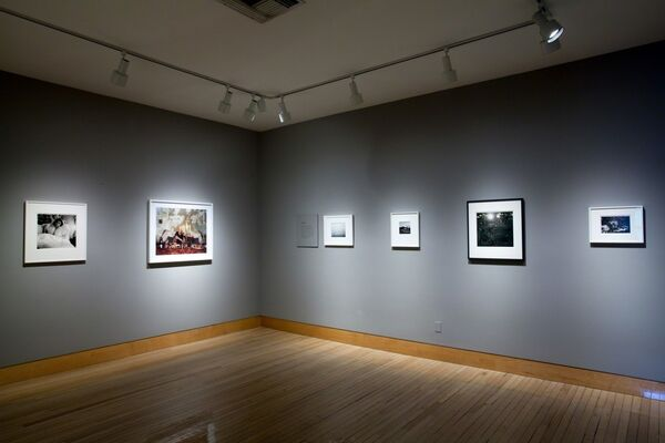 How I Learned to See: An (Ongoing) Education in Pictures, Curated by Hanya Yanagihara, installation view