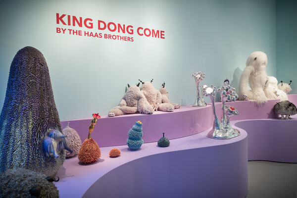 King Dong Come, installation view