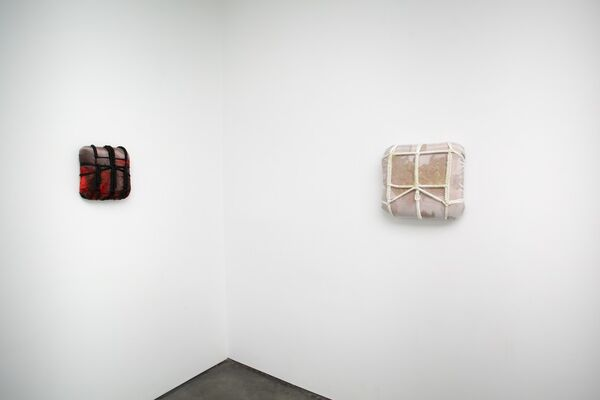 Vincent Tiley   How Bats Drink Water, installation view