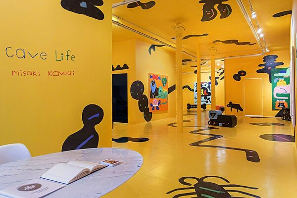Cave Life, installation view