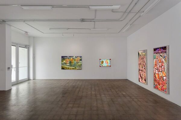 The Flaunting of the Youth, installation view