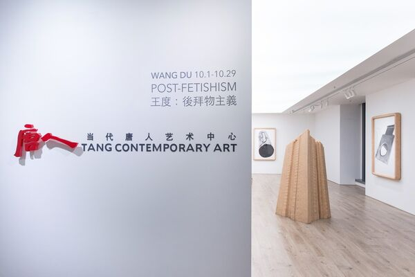 WANG DU – POST-FETISHISM, installation view