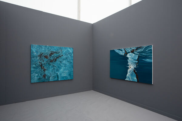 VARIOUS SMALL FIRES at Frieze Los Angeles 2020, installation view