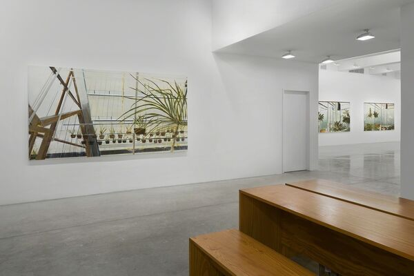 Carla Klein, installation view