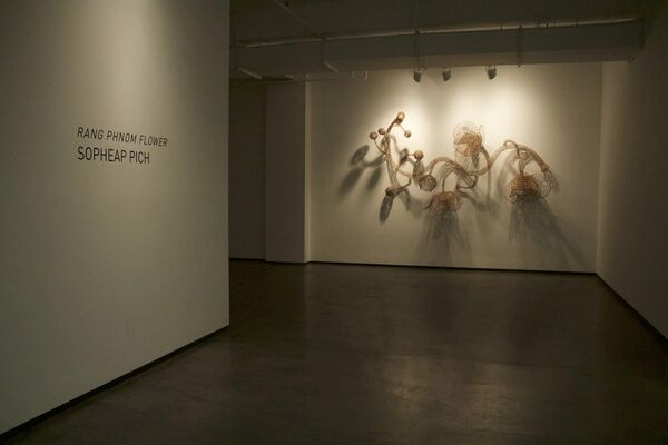 Sopheap Pich: Rang Phnom Flower, installation view