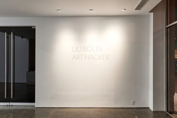 Art Hacker, installation view