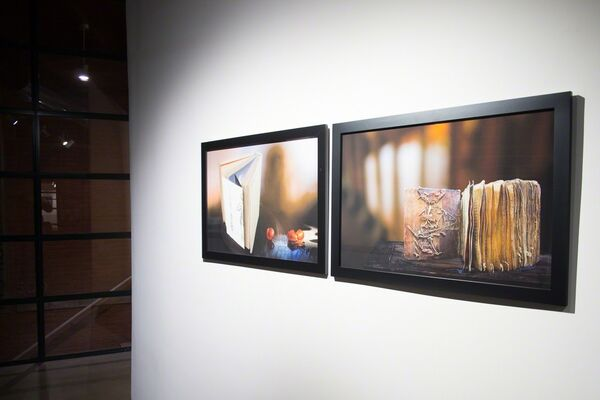 Olivia Parker: The Eye's Mind, installation view