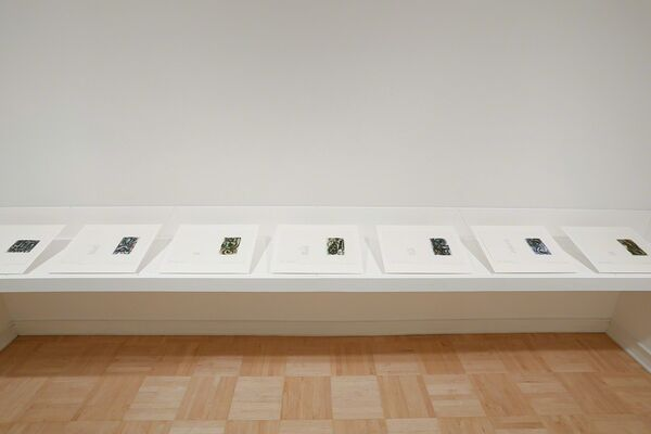 Viewpoints: Elizabeth Murray and Anne Waldman: Her Story, installation view