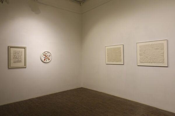 Kama Chameleon, installation view