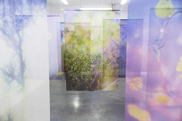 Jordan Sullivan, The Sun at Night, installation view