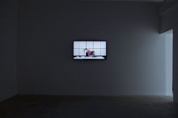 Unobservables, installation view