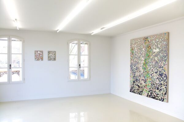 Beyond Appearances, installation view