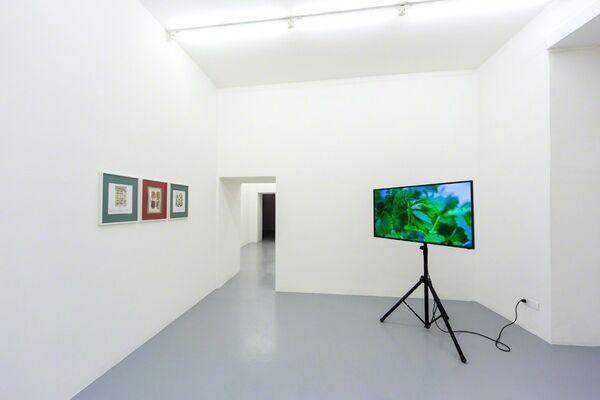 Umberto Di Marino at ARCOlisboa 2017, installation view