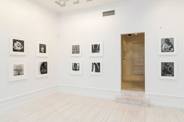 Robert Mapplethorpe, installation view