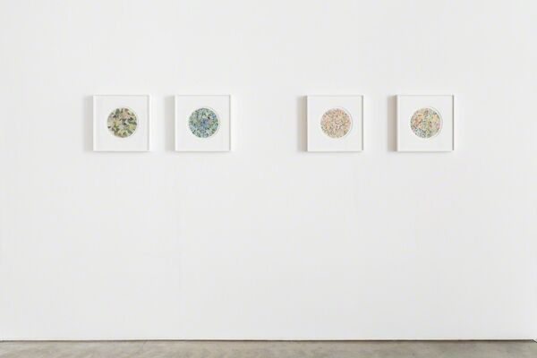 Not From Here, installation view
