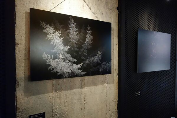 Andrea Katheder | FADE-TO-BLACK, installation view