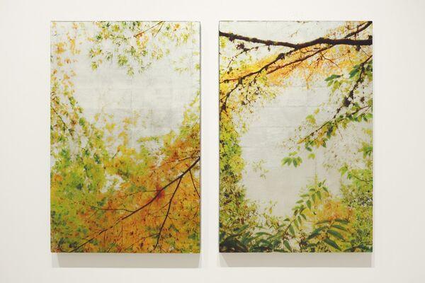 Susan Goldsmith, installation view
