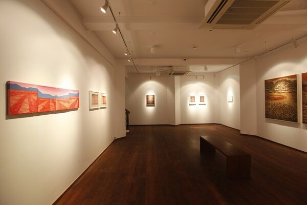 Cratered Fiction, installation view