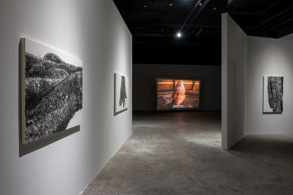 Root of Desire ─ Charwei Tsai solo exhibition, installation view